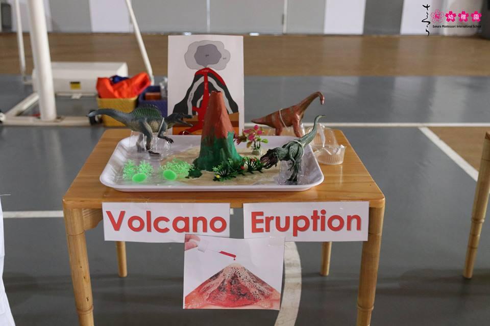 cac-ban-nho-truong-sakura-montessori-vui-hoi-khoa-hoc-amazing-science-28