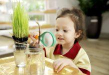 Cá tính sáng tạo học sinh Sakura Montessori được phát triển như thế nào?